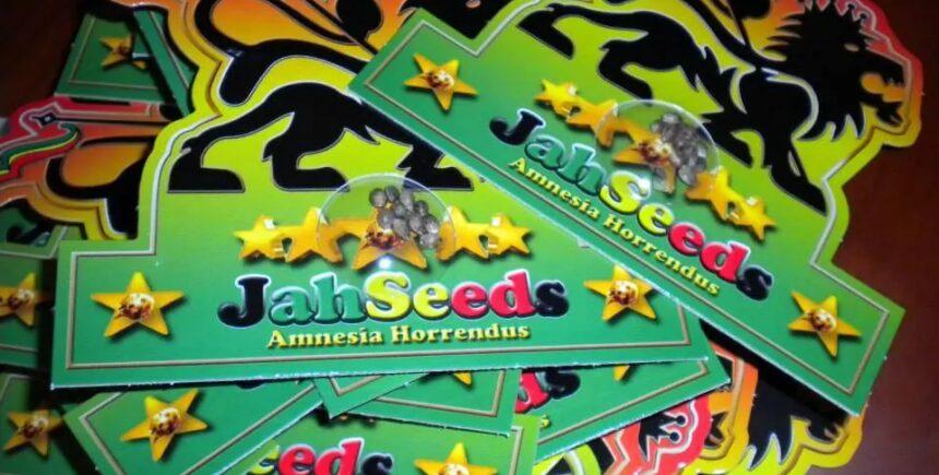 Jah Seeds packs