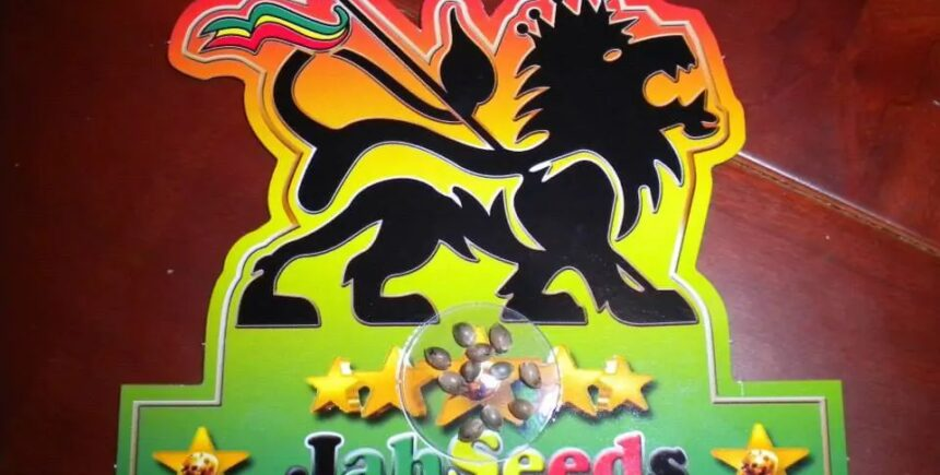 Jah Seeds product picture