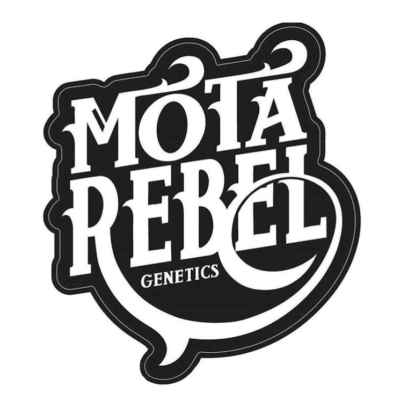 Motarebel Seeds Logo