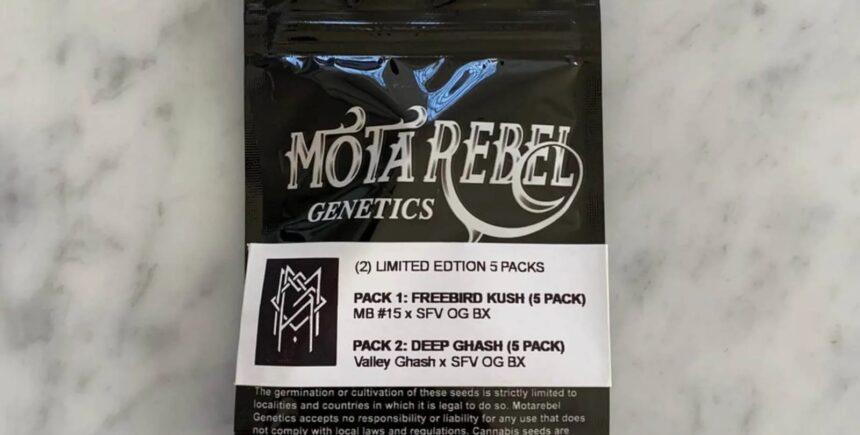 Motarebel pack