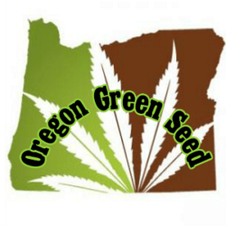 Oregon Green Seed