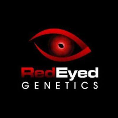 RedEyed Logo