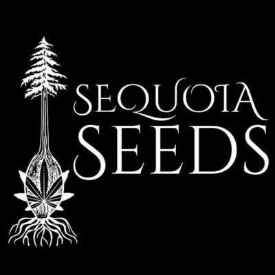 Sequoia Seeds Logo
