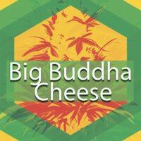 Big Buddha Cheese Logo