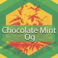 Chocolate Mint OG Logo
