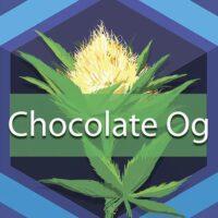 Chocolate OG Logo