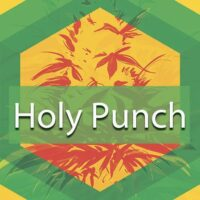 Holy Punch Logo