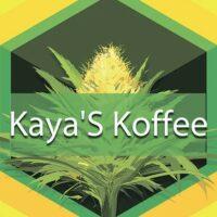 Kaya'S Koffee Logo