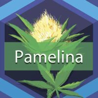 Pamelina Logo