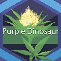 Purple Dinosaur Logo