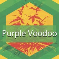Purple Voodoo Logo