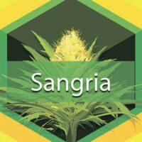 Sangria Logo