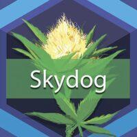 Skydog Logo