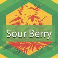 Sour Berry Logo
