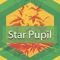 Star Pupil Logo