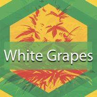 White Grapes Logo