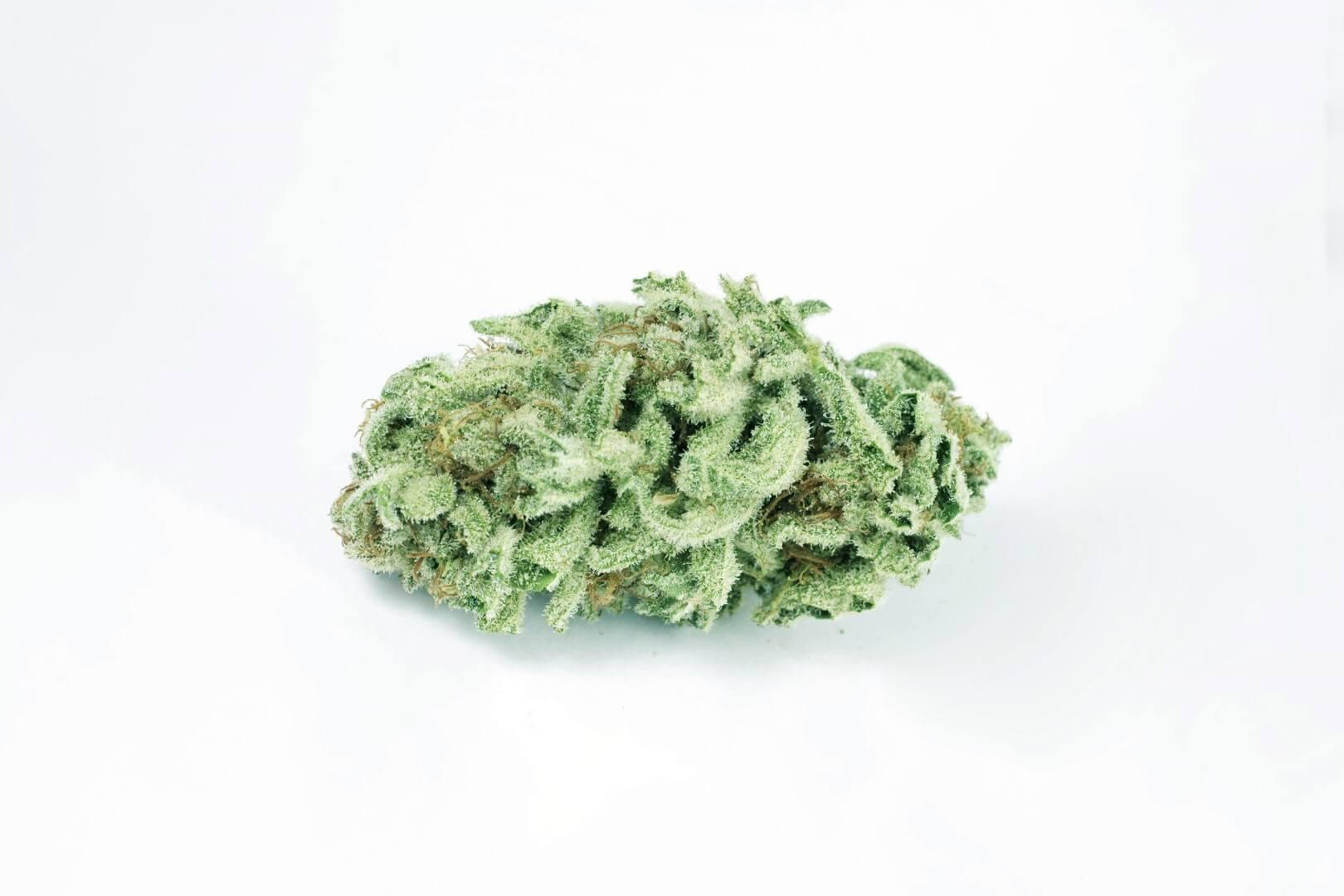 Berry White (Barry White) strain photo 1