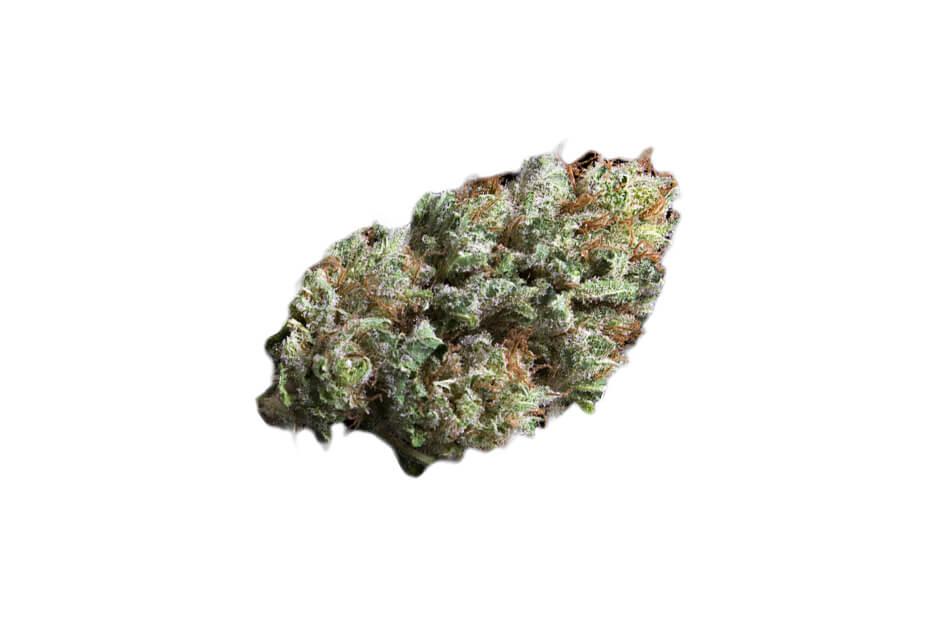 Berry White (Barry White) strain photo 2