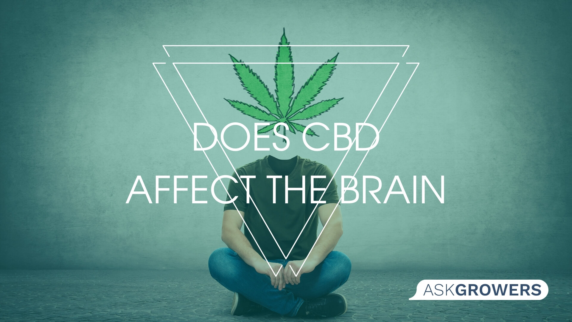 Does CBD Affect the Brain and Memory?, AskGrowers