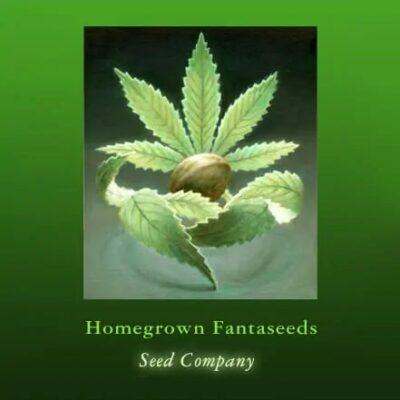 Homegrown Fantaseeds Logo
