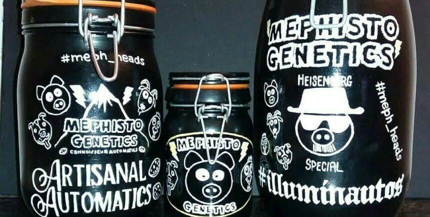 Mephisto Genetics products