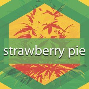Strawberry Pie, AskGrowers