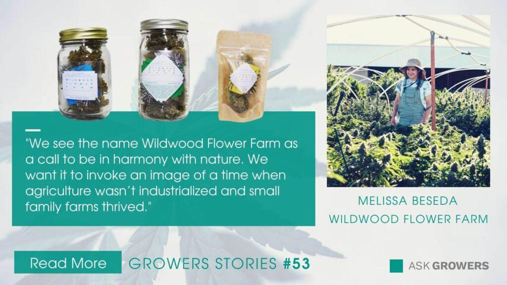 Wildwood Flower Farm interview link
