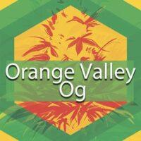 Orange Valley Og Logo