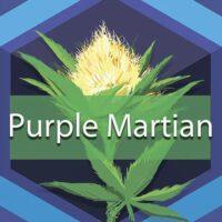 Purple Martian Logo