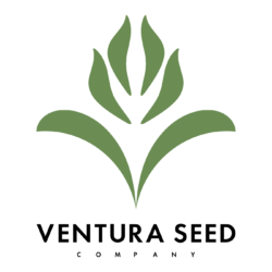 Ventura Seed Company