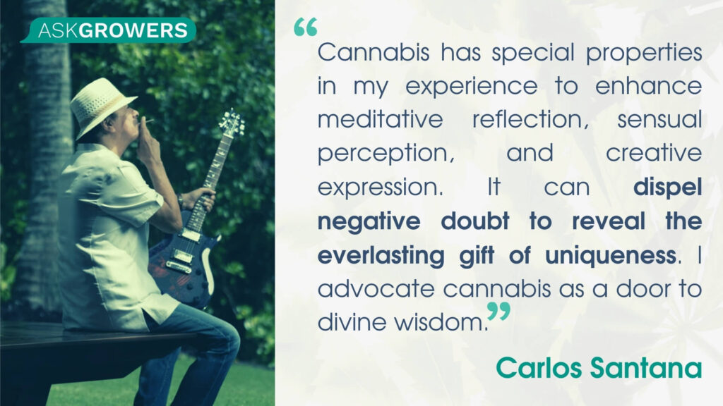 Celebrity Quotes About Their Cannabis Brands: Carlos Santana