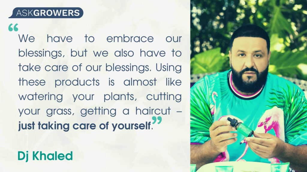Celebrity Quotes About Their Cannabis Brands: Dj Khaled