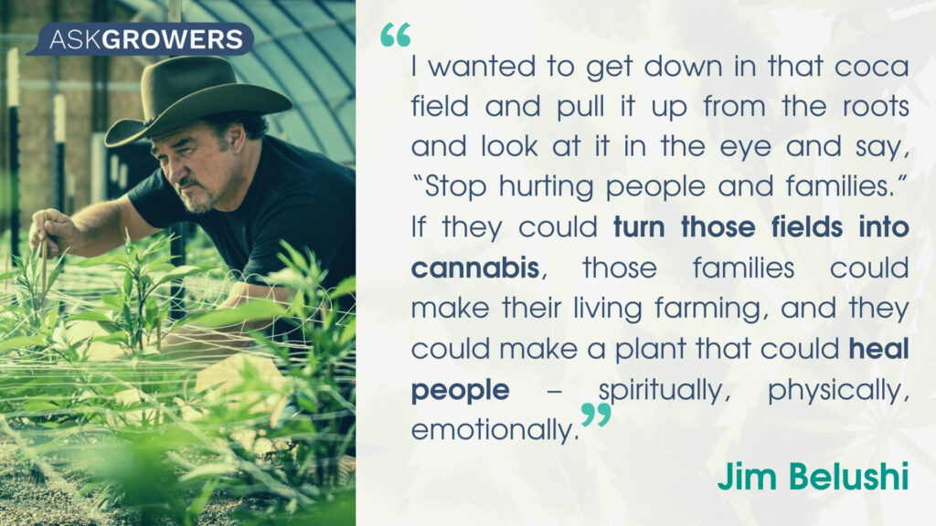 Celebrity Quotes About Their Cannabis Brands: Jim Belushi