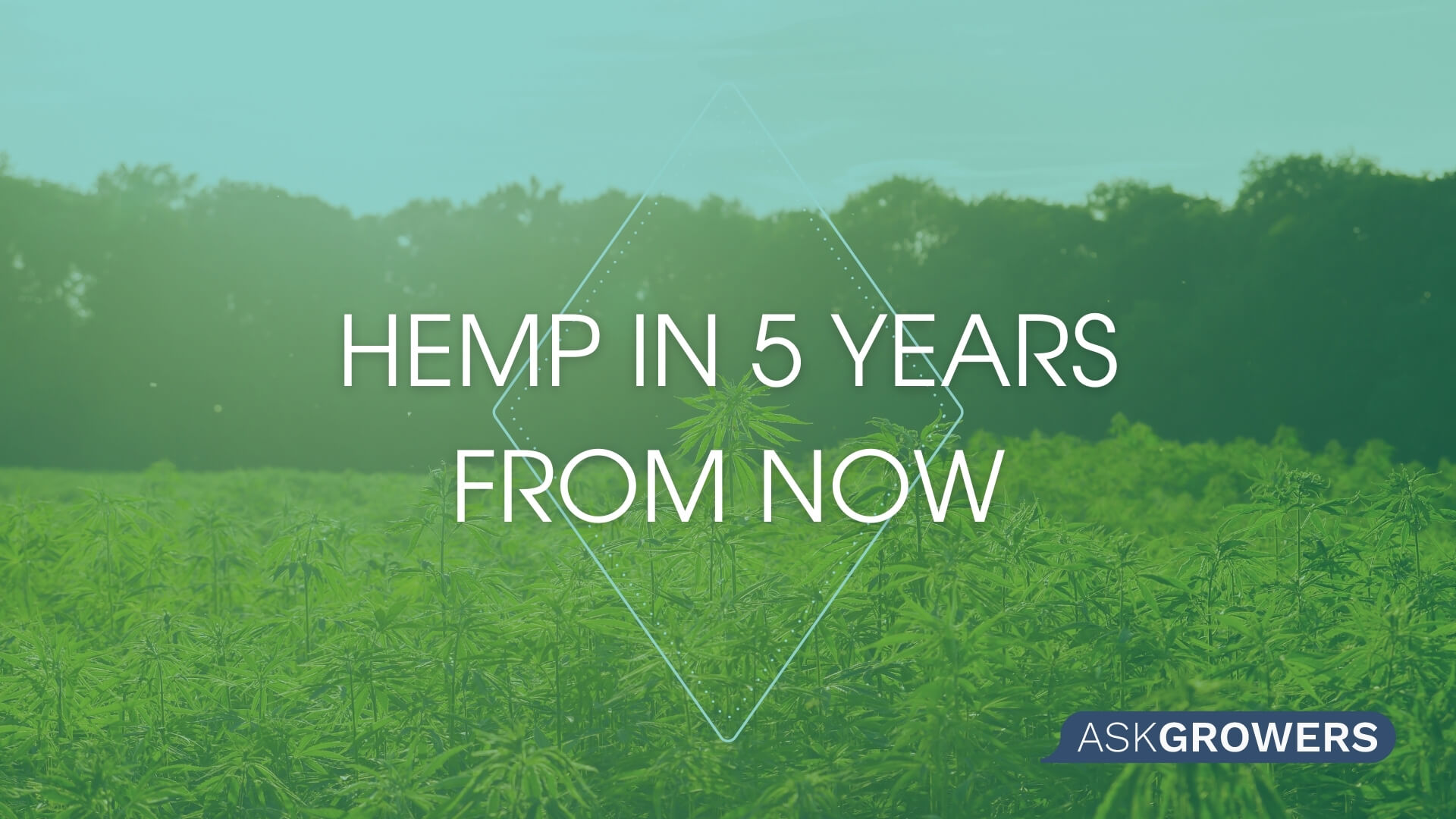 Hemp in 5 Years From Now, AskGrowers