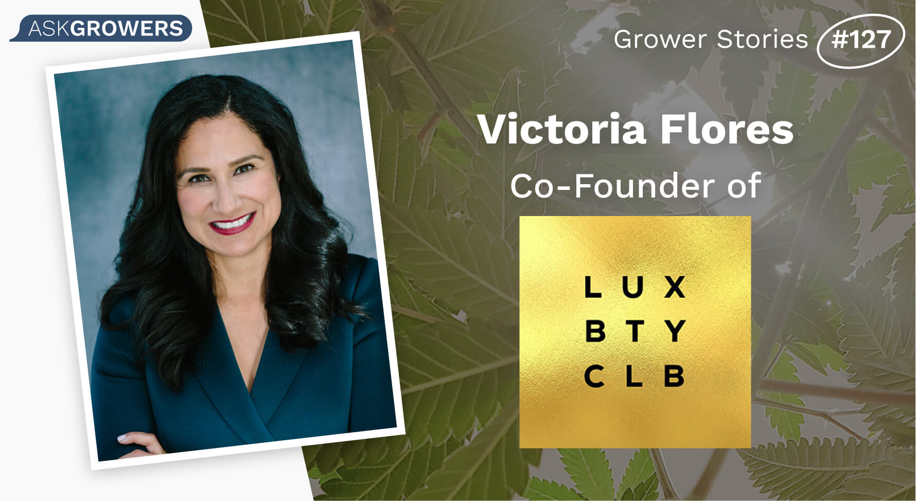 Lux Beauty Club interview header
